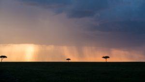 eine Kenia Safari von Keniareisen.de